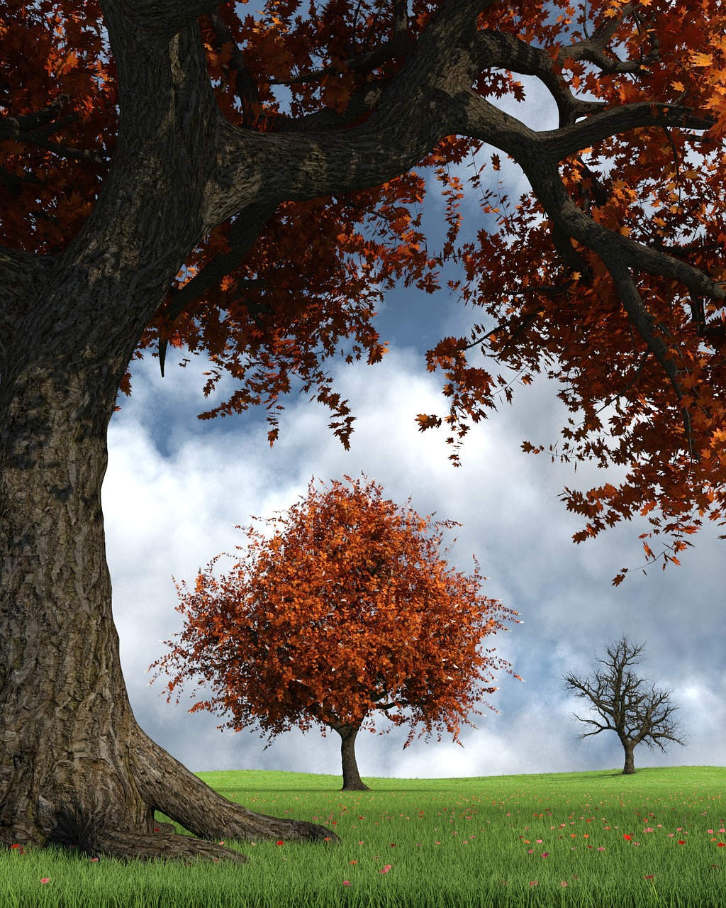 OBRÁZEK : autumn-2809498_1280.jpg