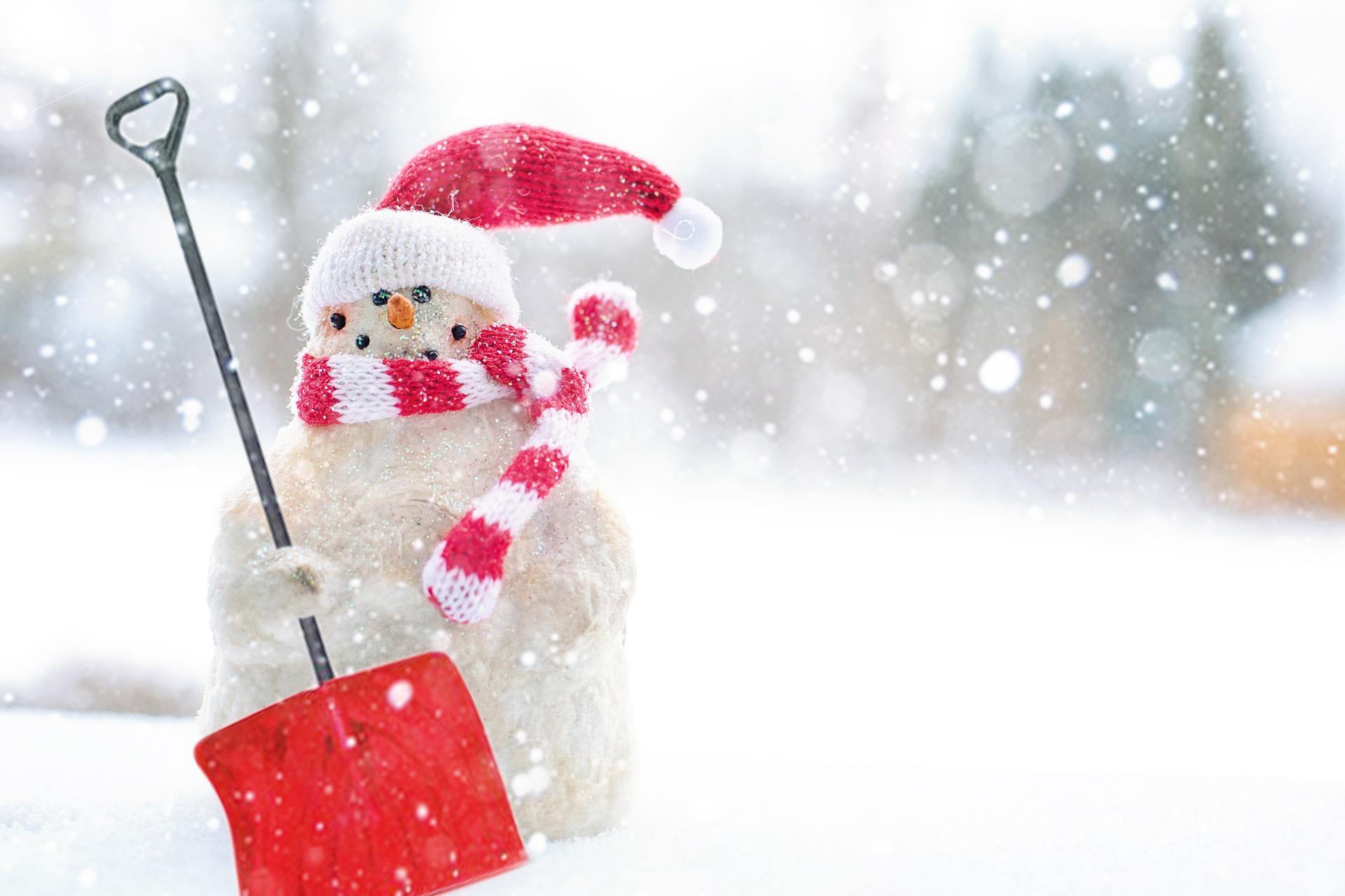 OBRÁZEK : winter-3084963_1920.jpg